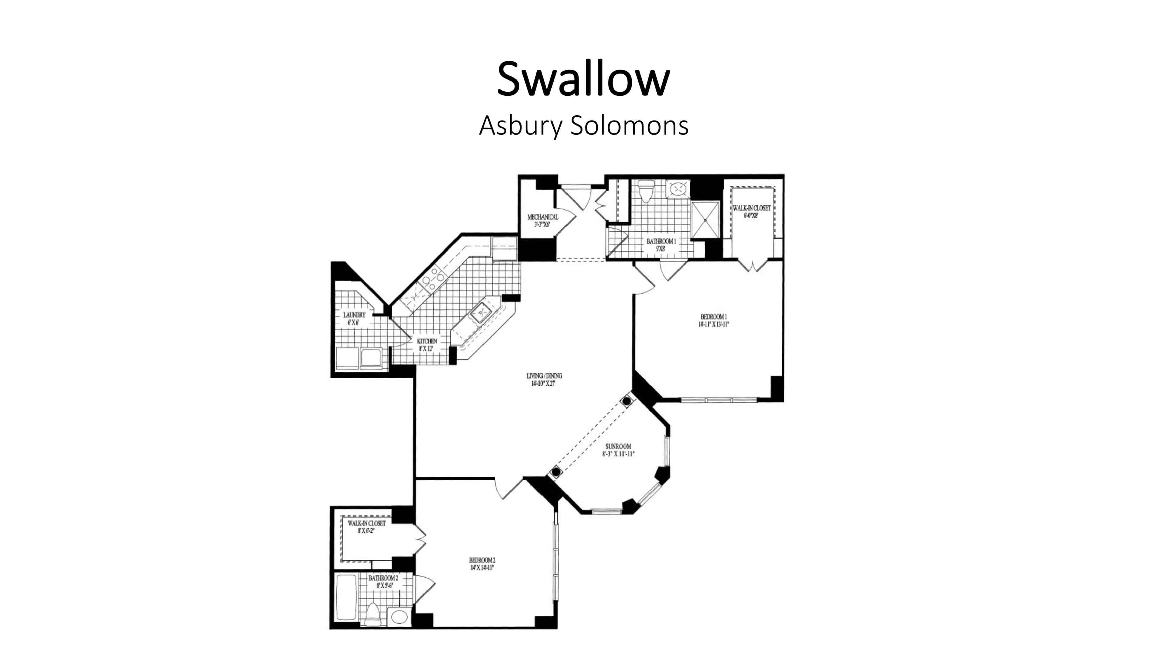 AS_Swallow