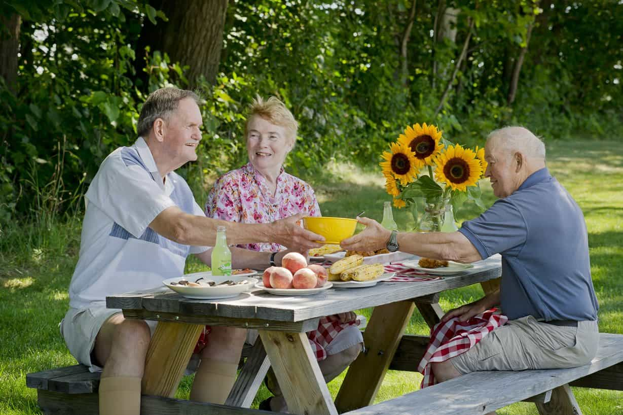 seniors having a picnic