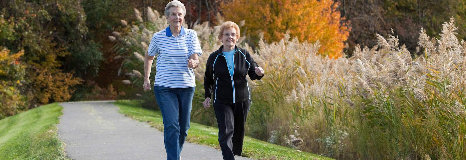 Top Exercises for Those With Arthritis