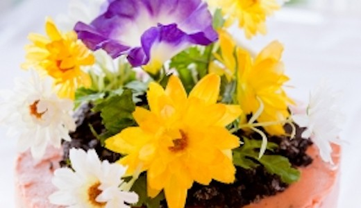 Springhill Dig Into Spring Event
