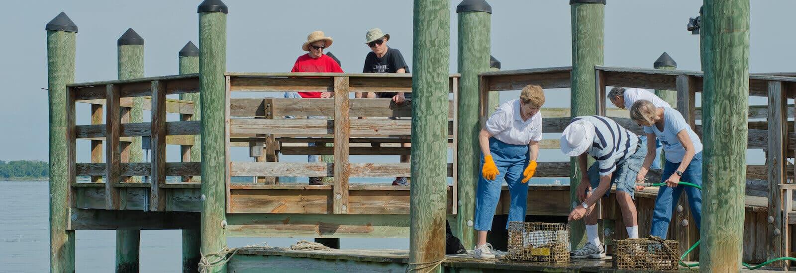 Environmental Stewardship at Asbury Solomons